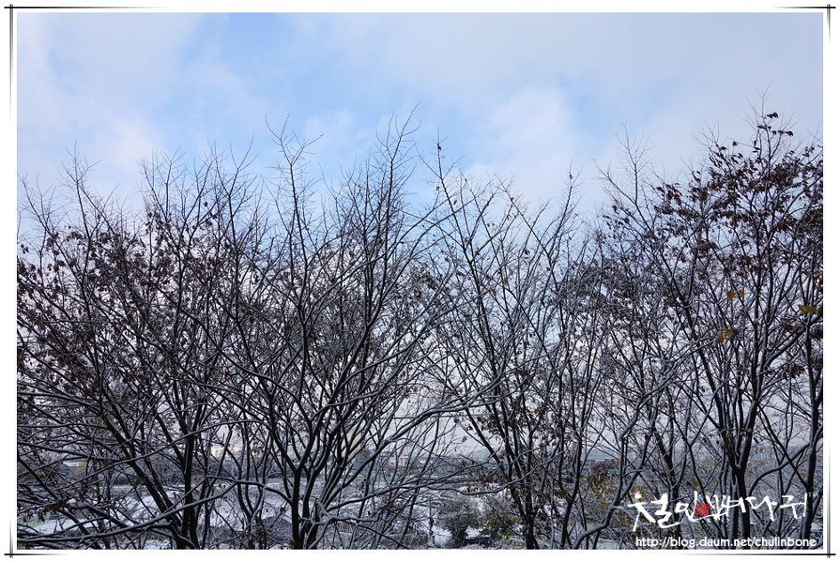 대전. 첫눈. 중촌동풍경